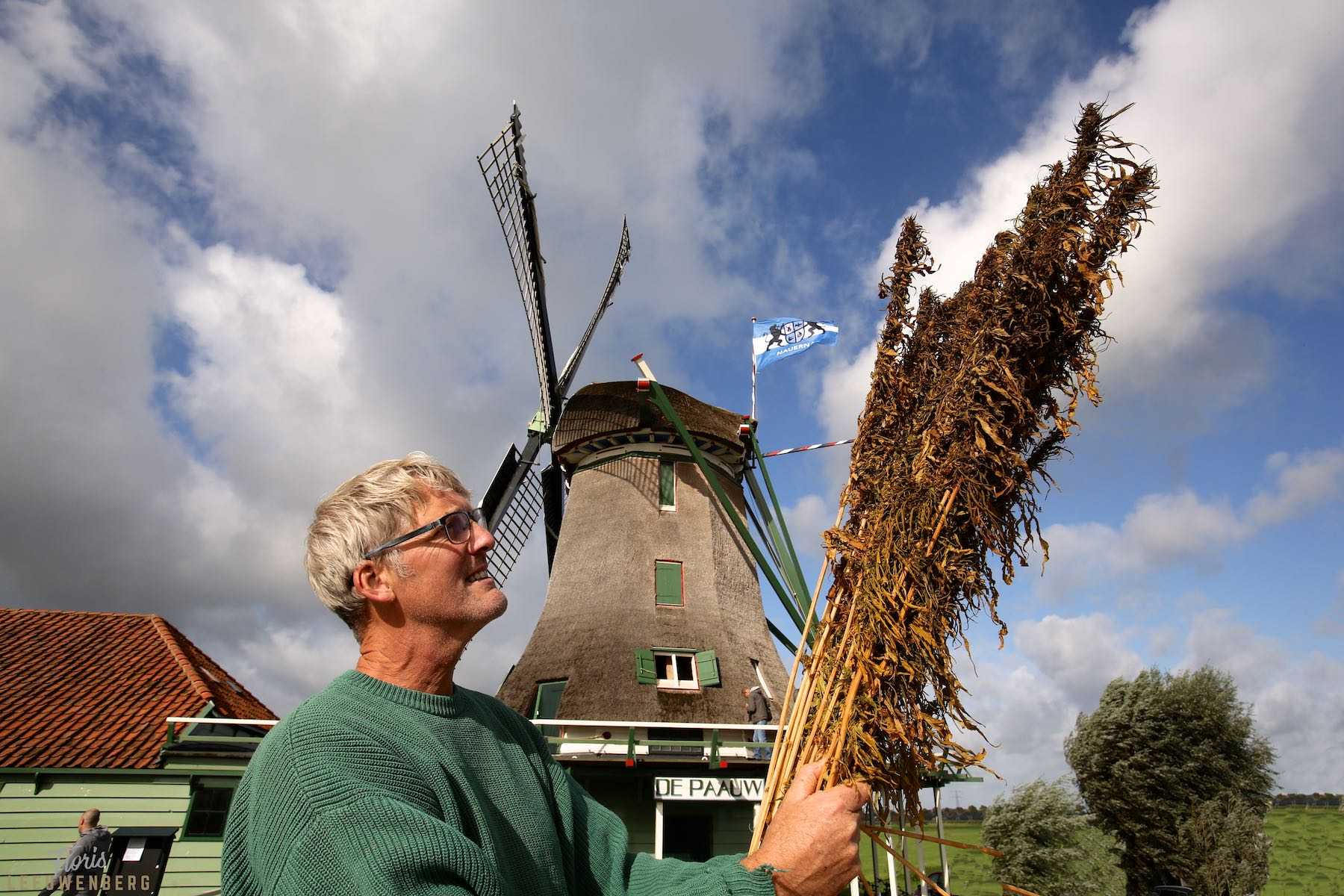 Miller stands in front of the mill holding a bunch of hemp stalks